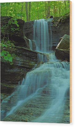 Rock Run Tributary Falls #3 Wood Print