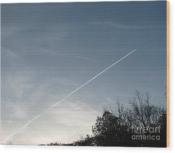 Wood Print featuring the photograph Rocket To The Stars by Michael Krek