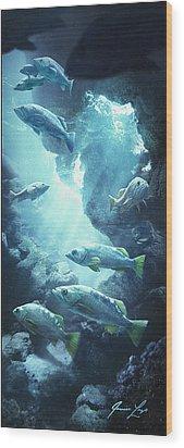 Rockfish Sanctuary Wood Print by Javier Lazo
