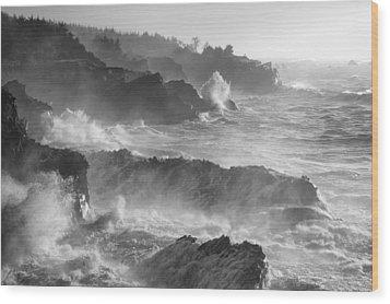 Rockin' The Coastline Wood Print