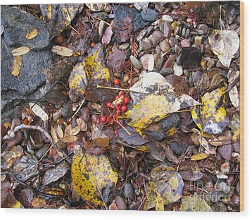 Rocks And Berries Wood Print by Leone Lund