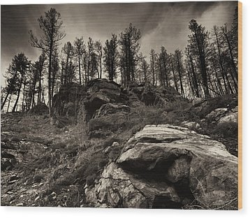 Wood Print featuring the photograph Rocks And Trees And Trees And Rocks by Trever Miller