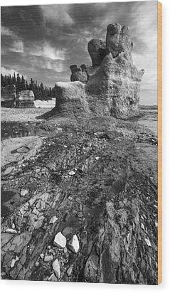 Wood Print featuring the photograph Rocks by Arkady Kunysz