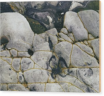Rocks At Point Lobos C2014 Wood Print