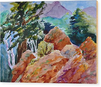 Rocks Near Red Feather Wood Print