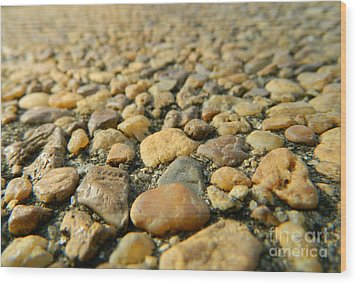 Rocks On My Path Wood Print by Andrea Anderegg