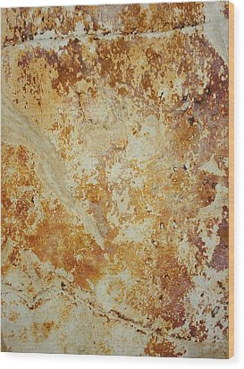 Rockscape 4 Wood Print by Linda Bailey