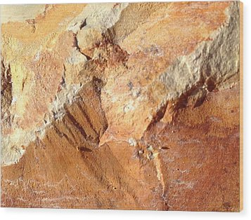 Rockscape 8 Wood Print by Linda Bailey