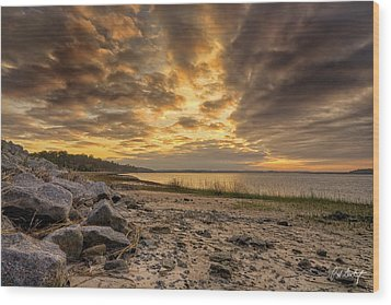 Rocky Beach Wood Print by Phill Doherty