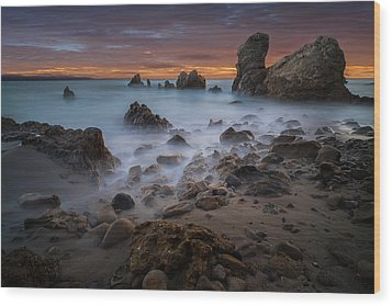 Rocky California Beach Wood Print by Larry Marshall