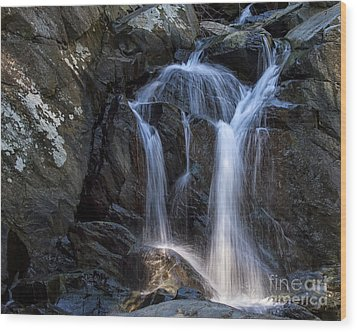 Rocky Falls Wood Print by Dale Nelson
