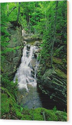 Rocky Glen Falls Wood Print