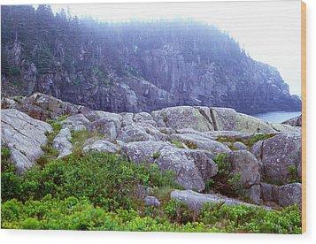 Rocky Maine Coast Wood Print by Amanda Kiplinger