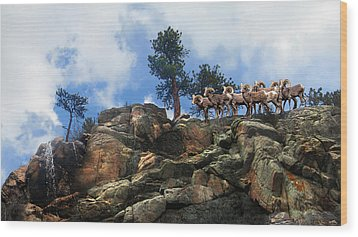 Rocky Mountain Big Horn Herd Wood Print by Ric Soulen