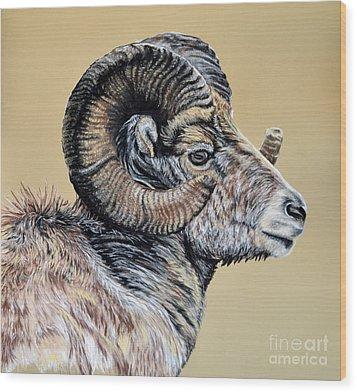 Rocky Mountain Ram Wood Print by Ann Marie Chaffin