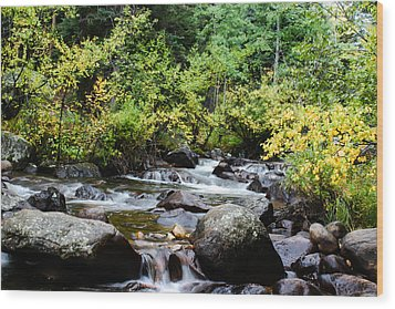 Wood Print featuring the photograph Rocky Mountain Stream by Jay Stockhaus