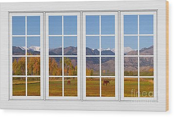 Rocky Mountains Horses White Window Frame View Wood Print by James BO  Insogna