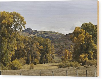 Rocky Peak At Lower Elk River Wood Print by Daniel Hebard
