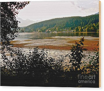 Rocky Point Port Moody Wood Print by Sher Nasser