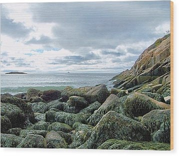 Wood Print featuring the photograph Rocky Sand Beach by Gene Cyr