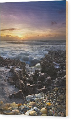 Rocky Shore Wood Print by Debra and Dave Vanderlaan