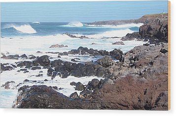 Rocky Shore Wood Print by Sheila Byers