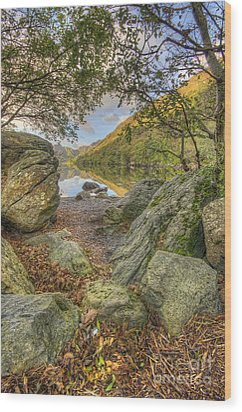 Rocky Shore's Wood Print by Darren Wilkes