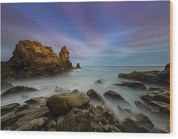 Rocky Southern California Beach Wood Print by Larry Marshall