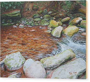 Rocky Stream Wood Print by Mike Ivey