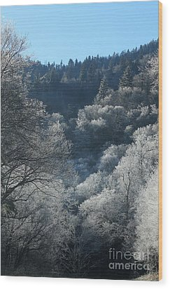 Rocky Top Winter Wood Print