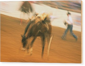 Rodeo Wood Print by Paulette Maffucci