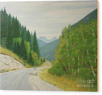 Rogers Pass Bc Wood Print
