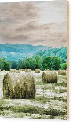 Rolled Bales Wood Print by Mick Anderson