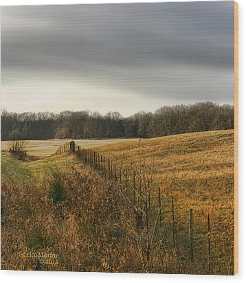 Rolling Field Wood Print by EricaMaxine  Price