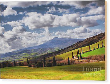 Rolling Hills Of Tuscany Wood Print by Polly Peacock