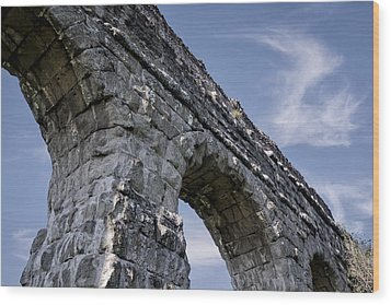 Roman Aqueducts II Wood Print by Joan Carroll