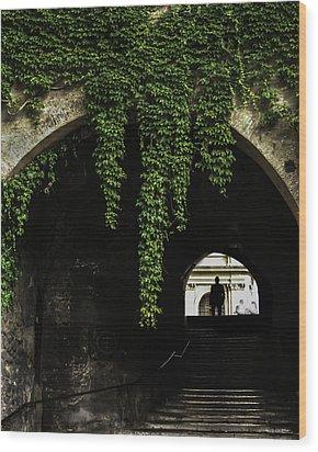 Roman Arch Wood Print