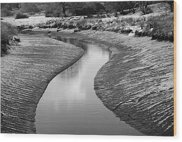 Wood Print featuring the digital art Roman River Bend by David Davies