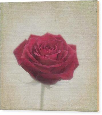 Romance Wood Print by Kim Hojnacki