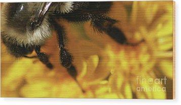 Romancing Yellow Wood Print by Linda Shafer