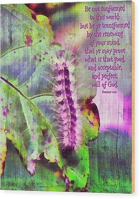 Romans 12 2 Wood Print by Michelle Greene Wheeler