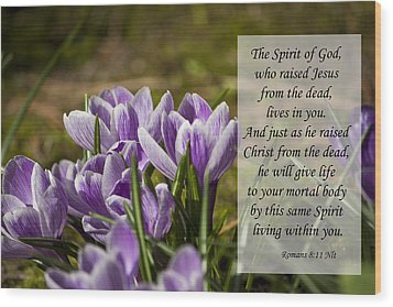 Romans 8 11 Wood Print by Inspirational  Designs