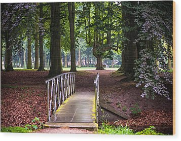 Romantic Bridge To Shadow Place. De Haar Castle Wood Print by Jenny Rainbow