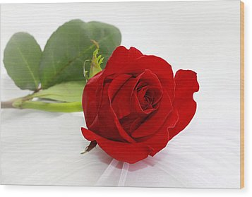 Romantic I Love You Red Rose Wood Print