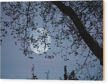 Wood Print featuring the photograph Romantic Moon  by Angel Jesus De la Fuente