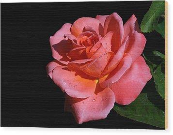 Wood Print featuring the photograph Romantica by Doug Norkum