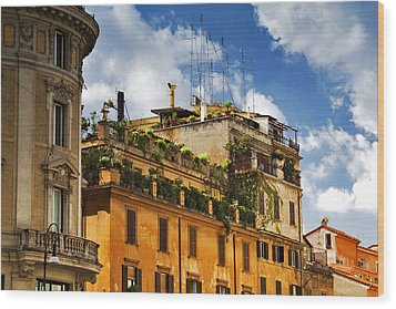 Rooftop Garden Wood Print by Matthew Ahola