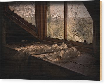 Room With A View Wood Print by Liz  Alderdice