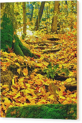 Wood Print featuring the photograph Root Steps by Zafer Gurel