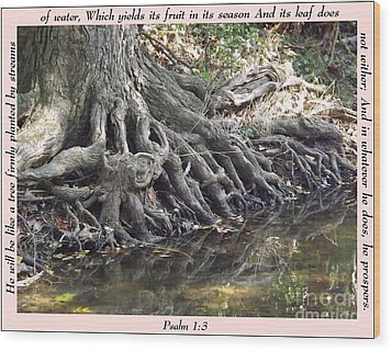 Roots With Verse Psalm 1 3 Wood Print